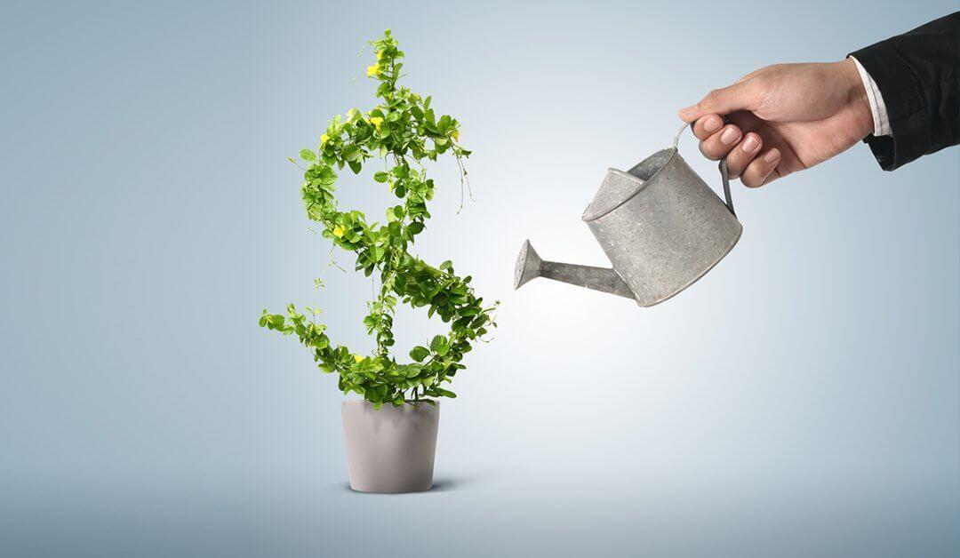 PPC – cum sa iti cresti afacerea prin marketing online